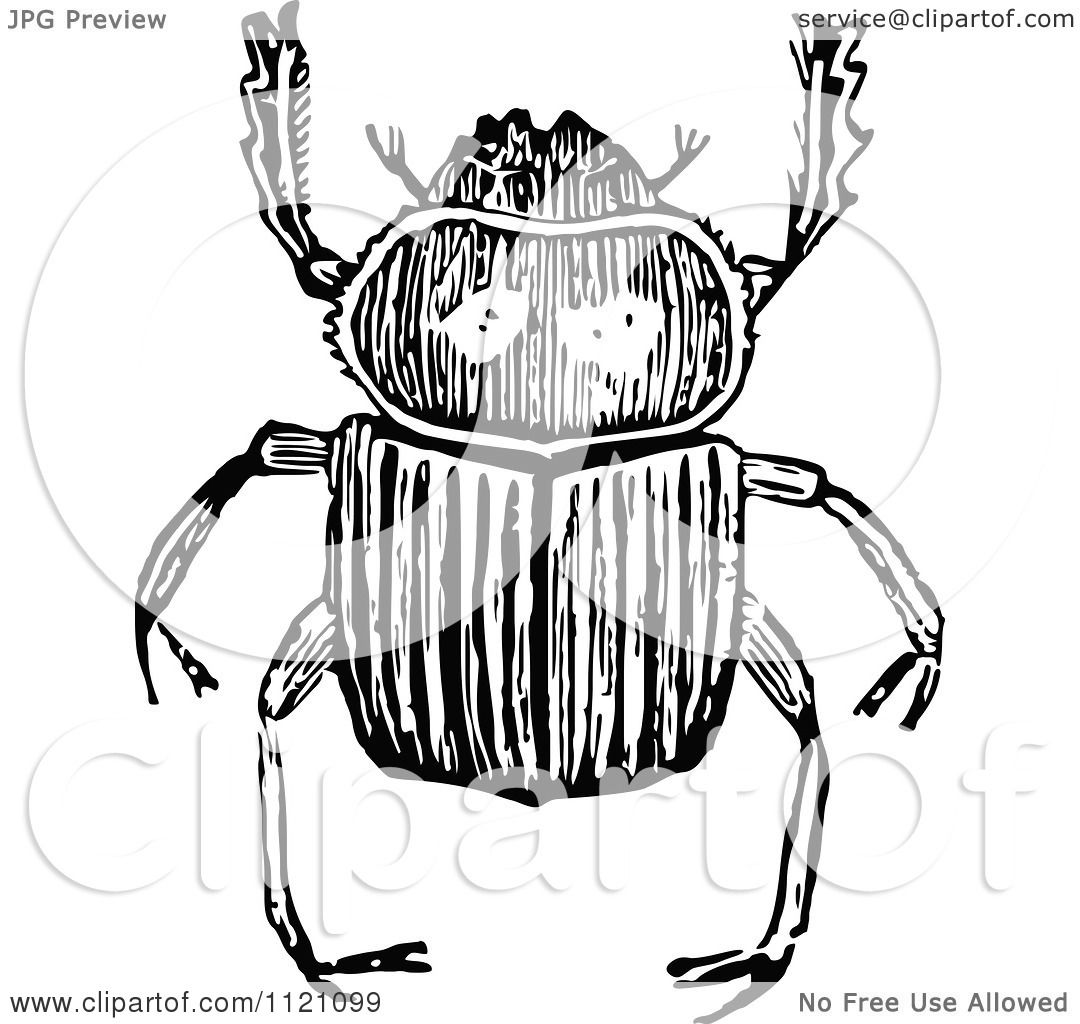 Clipart Of A Retro Vintage Black And White Beetle