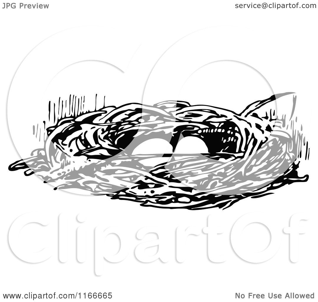 Clipart Of A Retro Vintage Black And White Bird Nest With