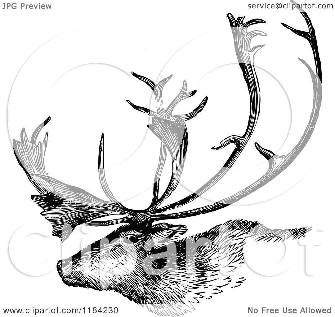 Clipart Of A Retro Vintage Black And White Deer Stag