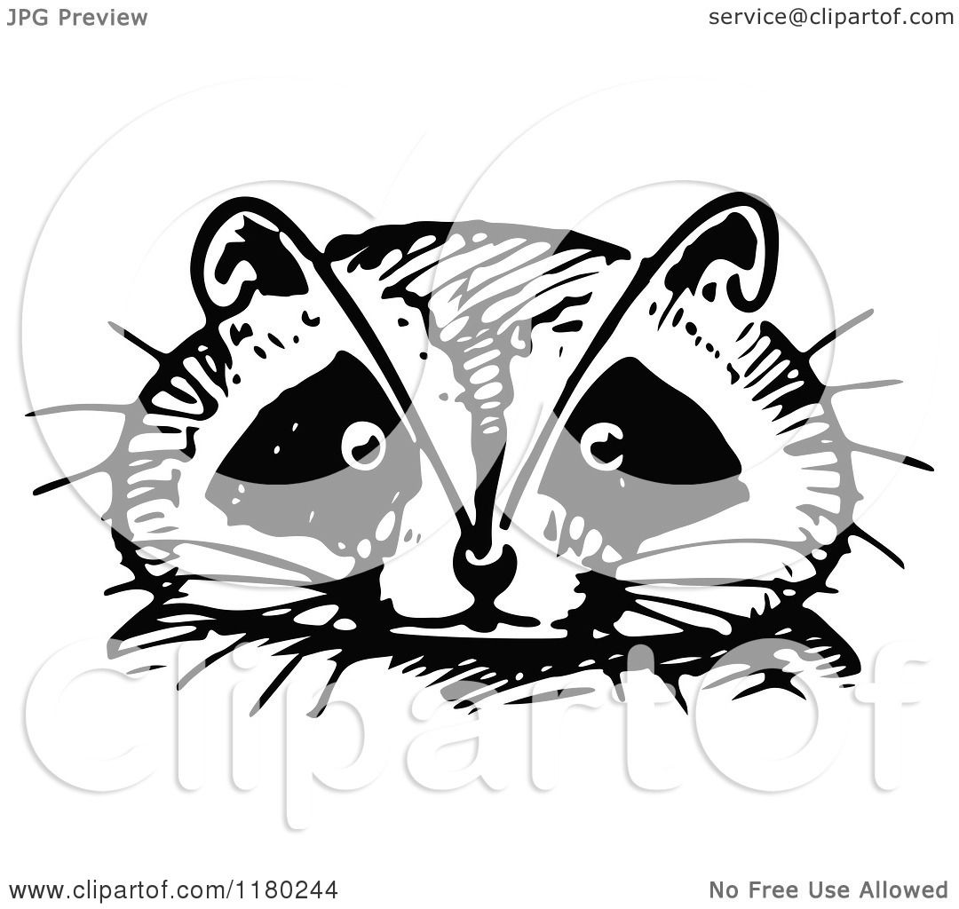 Clipart Of A Retro Vintage Black And White Raccoon Face