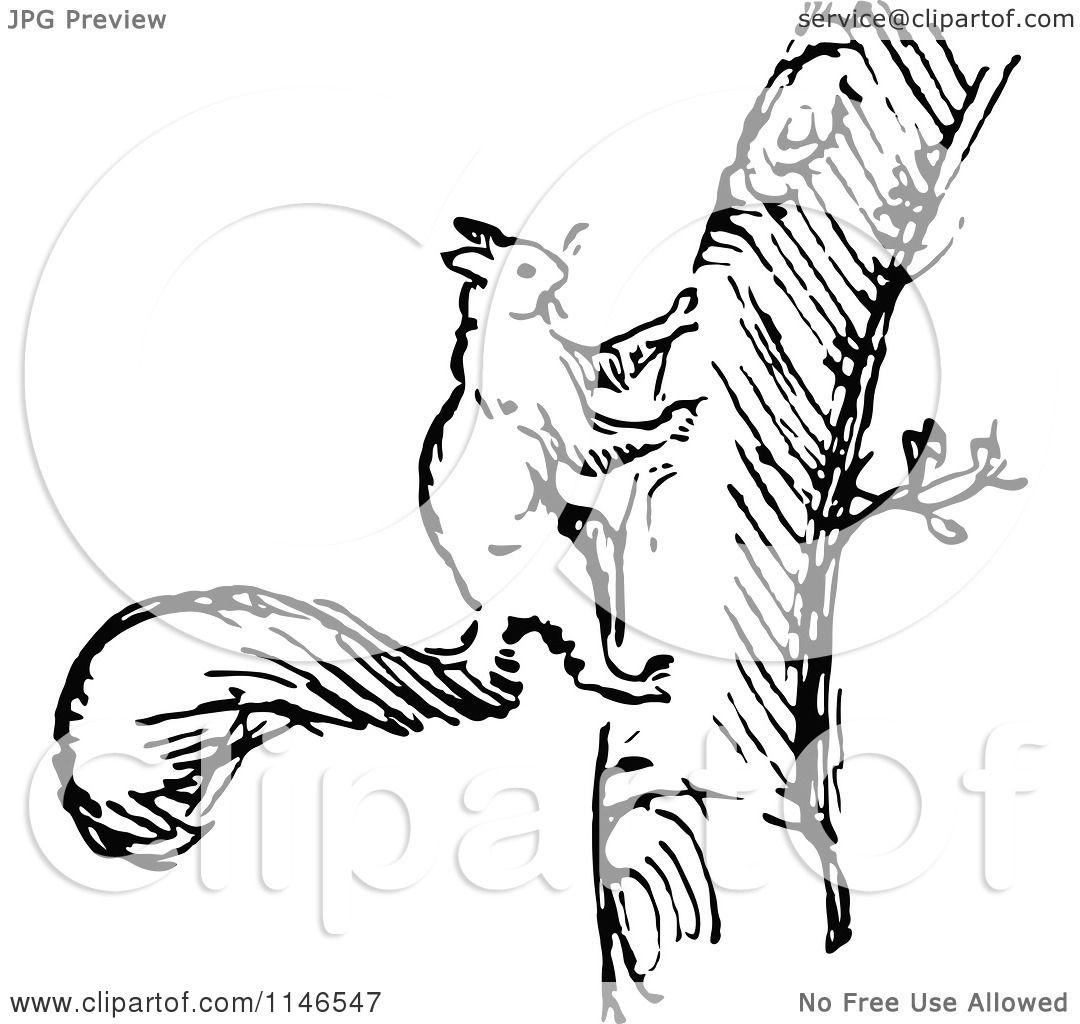 Clipart Of A Retro Vintage Black And White Squirrel