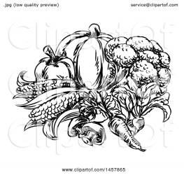 vegetables clipart illustration vector sketched royalty atstockillustration clip
