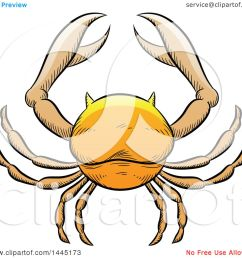 clipart of a sketched golden yellow astrology zodiac cancer crab royalty free vector illustration by cidepix [ 1080 x 1024 Pixel ]