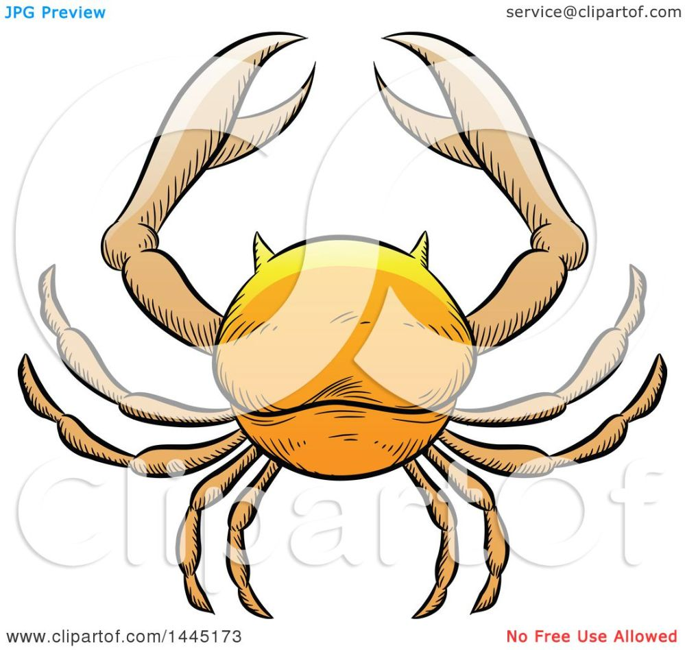 medium resolution of clipart of a sketched golden yellow astrology zodiac cancer crab royalty free vector illustration by cidepix