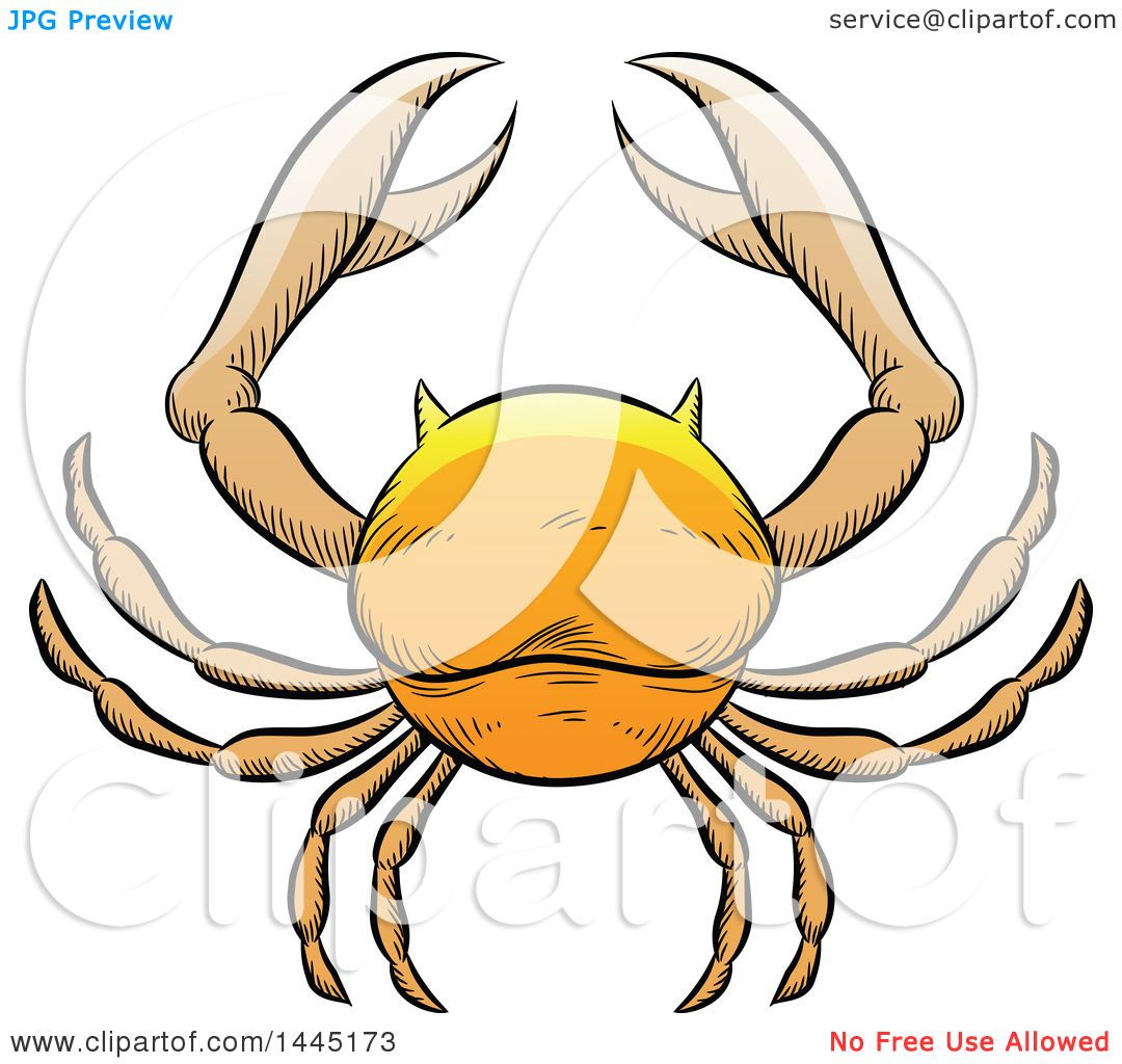 hight resolution of clipart of a sketched golden yellow astrology zodiac cancer crab royalty free vector illustration by cidepix