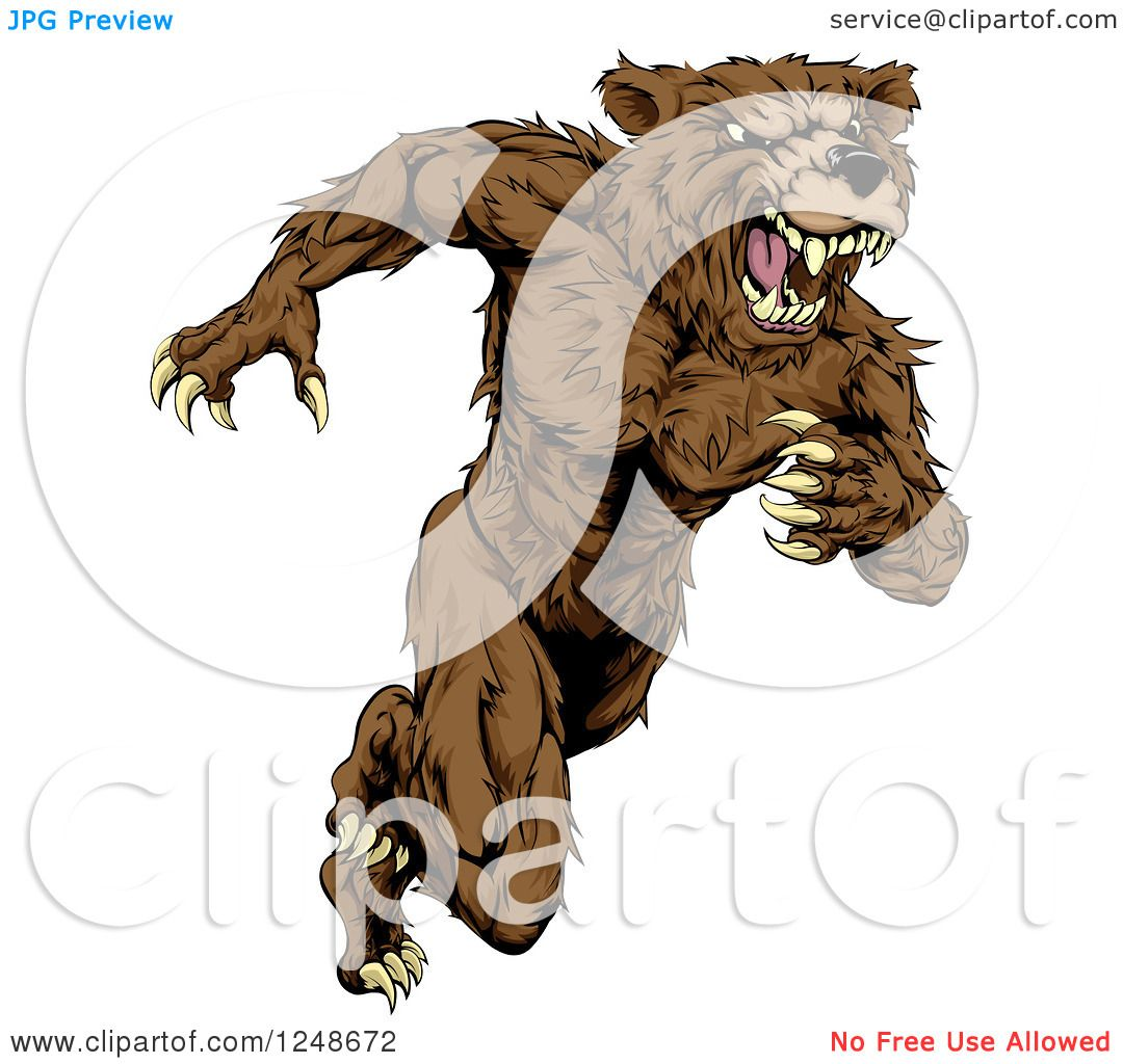 hight resolution of clipart of a snarling muscular bear mascot running upright royalty free vector illustration by atstockillustration
