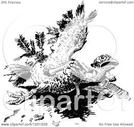 turkey bird injured illustration clipart royalty vector prawny