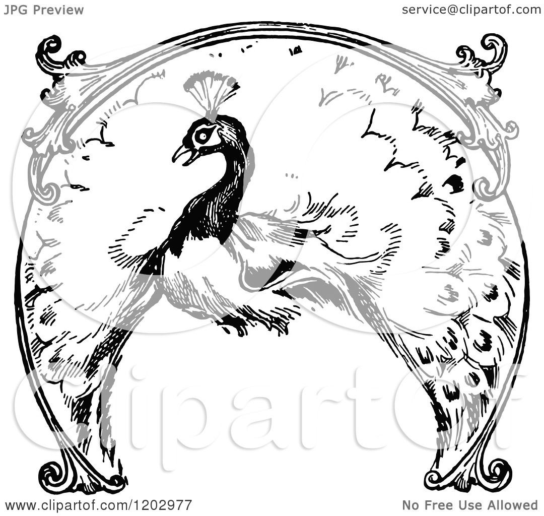 Clipart Of A Vintage Black And White Lost Princess Of Oz