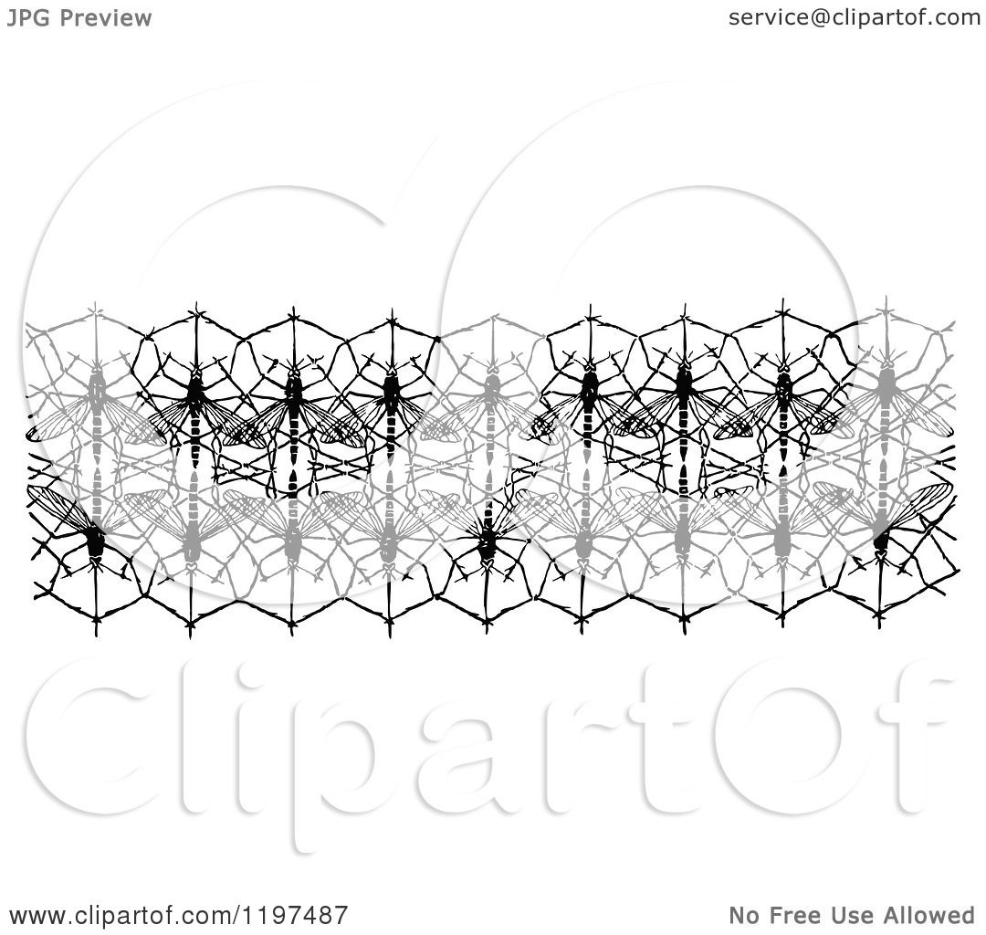 Clipart Of A Vintage Black And White Mosquito Net Border