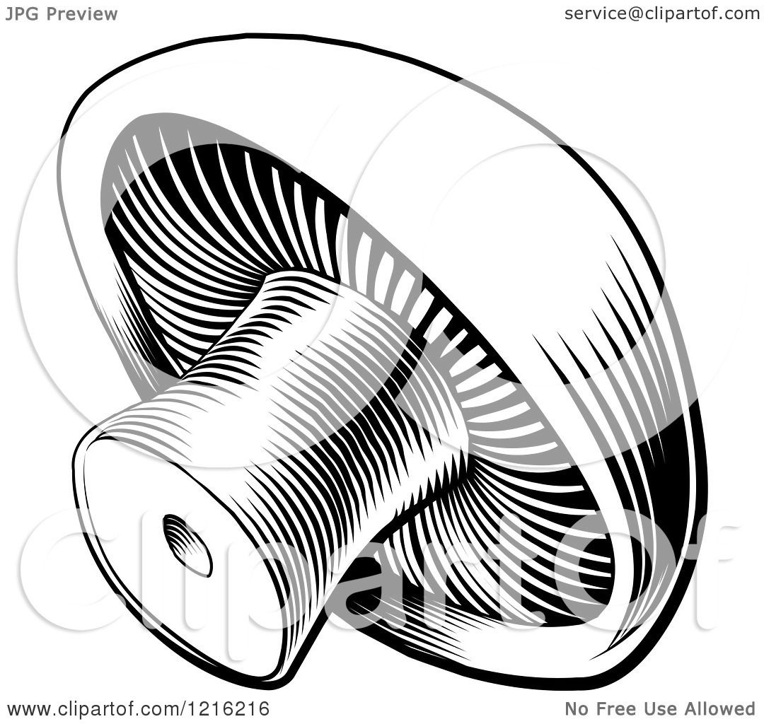 Clipart Of A Vintage Woodcut Styled Button Mushroom In