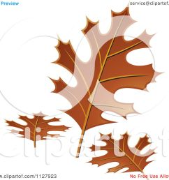 clipart of autumn oak leaves royalty free vector illustration by lal perera [ 1080 x 1024 Pixel ]