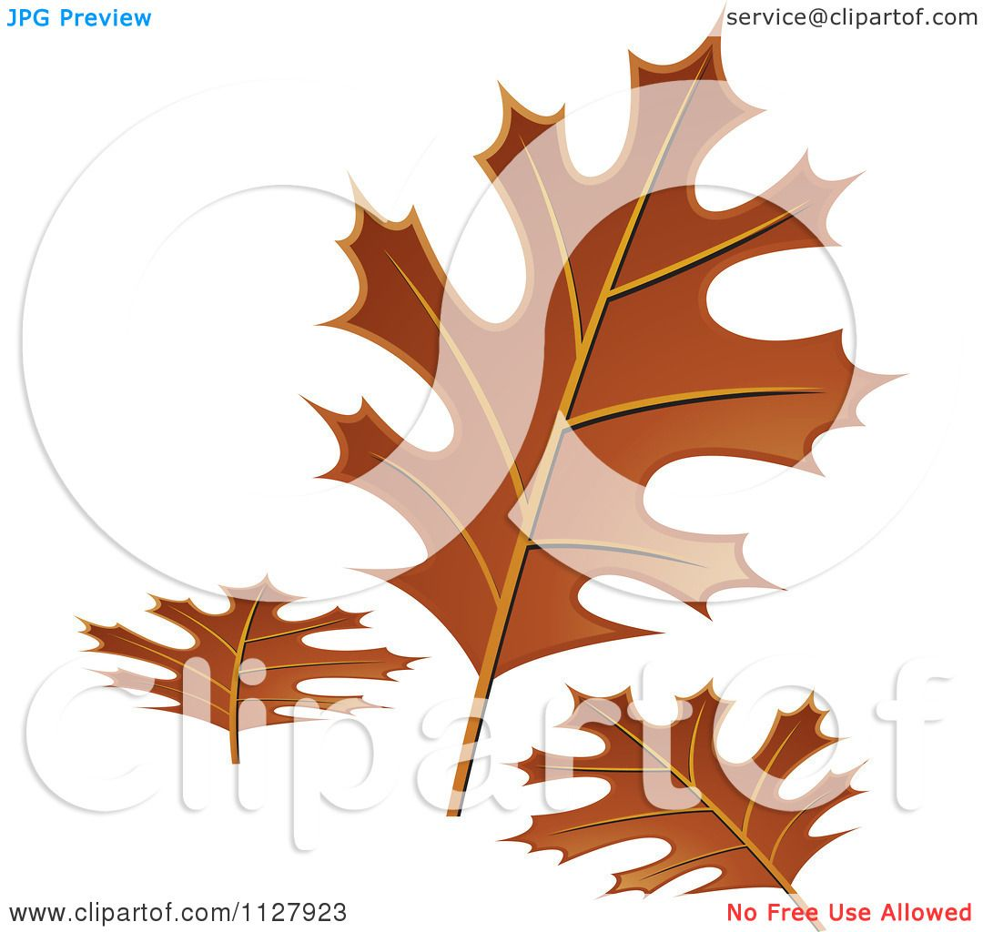 hight resolution of clipart of autumn oak leaves royalty free vector illustration by lal perera