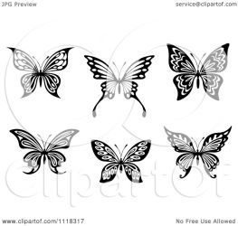 butterflies illustration vector clipart royalty notes tradition sm seamartini copyright