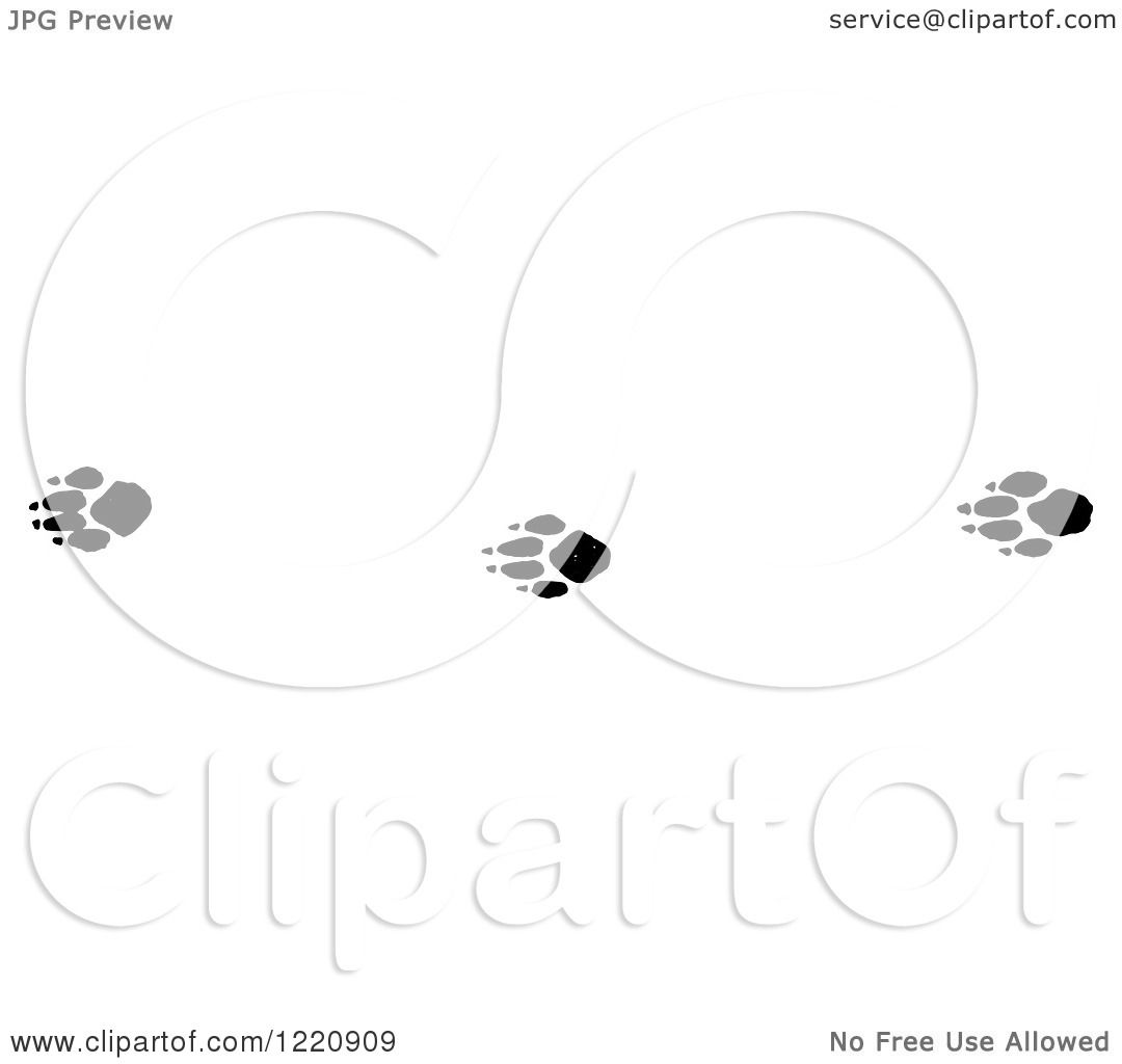 Clipart Of Black And White Red Fox Tracks