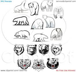 bear polar clipart designs illustration vector royalty tradition sm seamartini copyright graphics