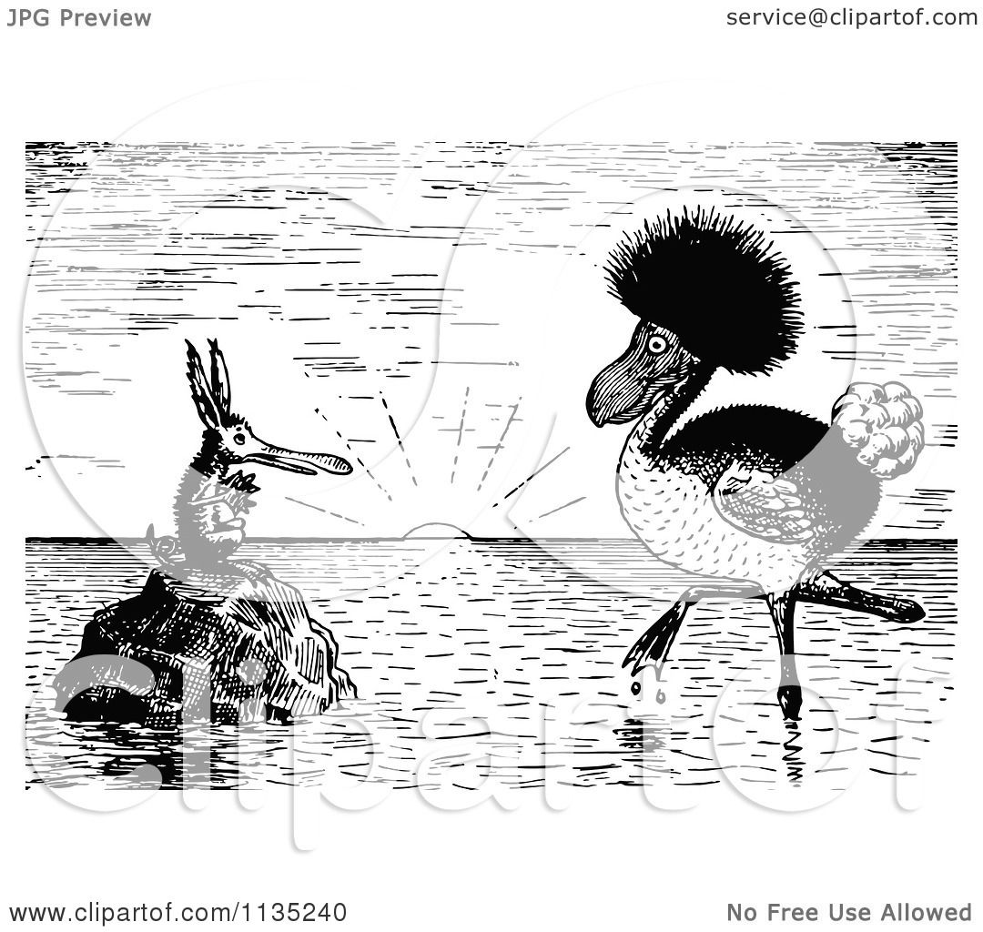 Clipart Of Retro Black And White Odd Birds At Sunset