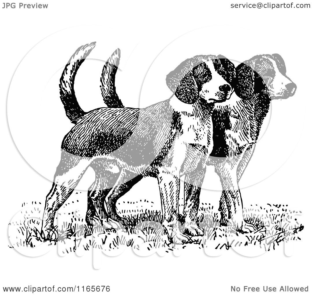 Clipart Of Retro Vintage Black And White Beagle Puppies