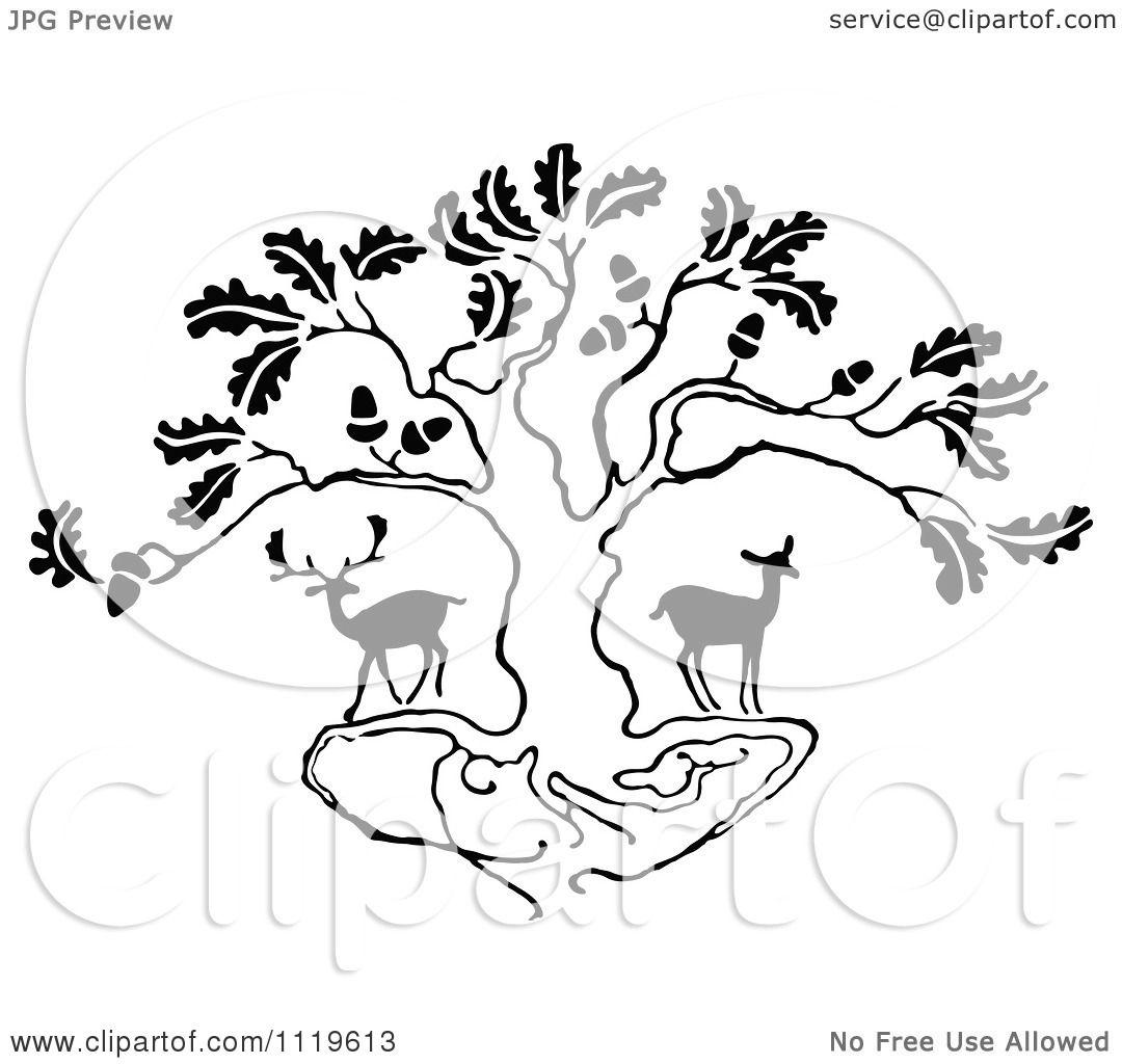 Oak Tree Clipart