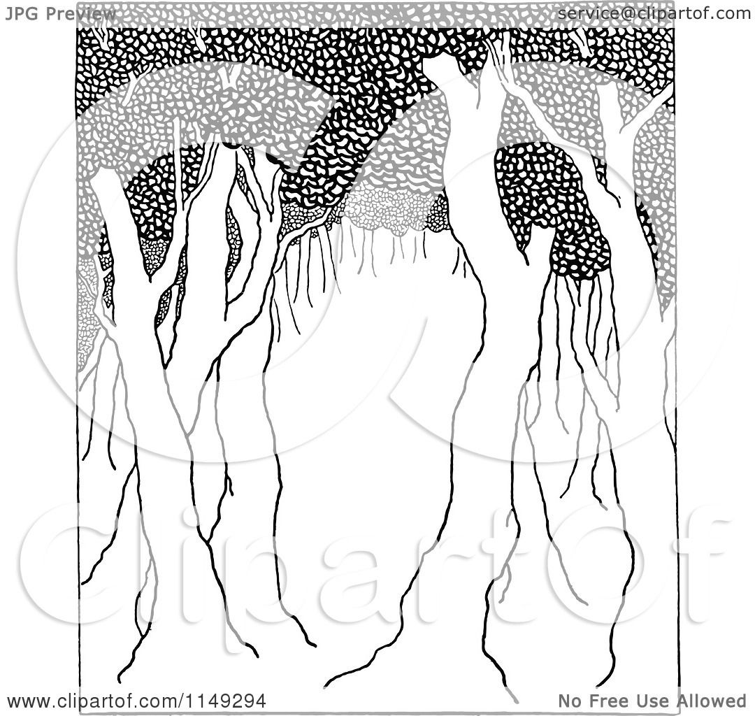 Clipart Of Retro Vintage Black And White Trees In A Forest