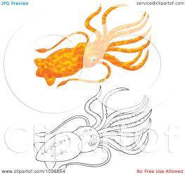 squid orange illustration clipart royalty bannykh alex without background regarding notes