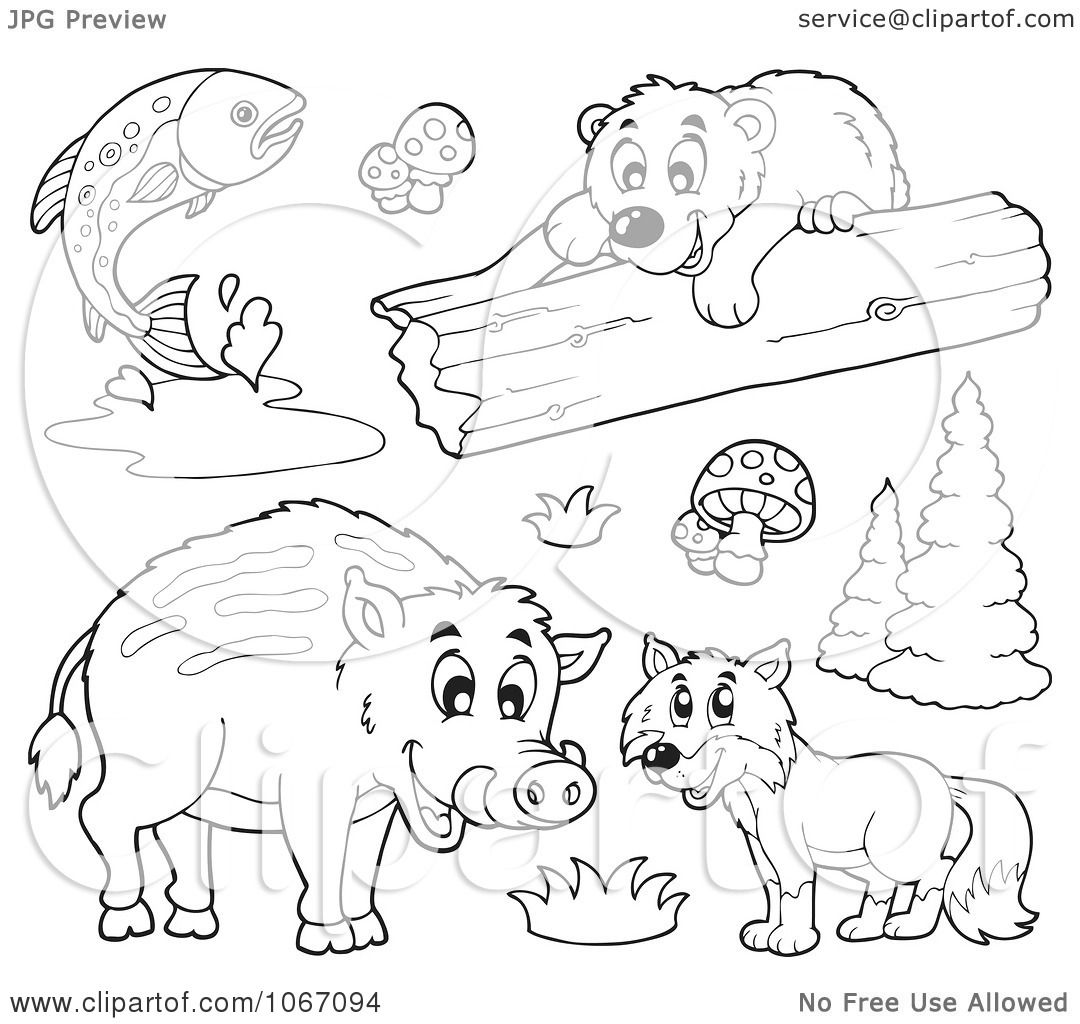 Clipart Outlined Forest Animals 1
