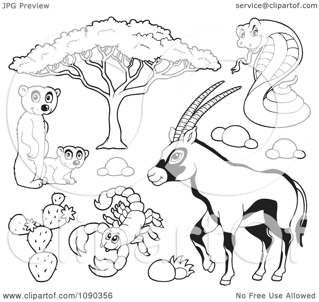 Clipart Outlined Meerkat Scorpion Cobra And Gazelle