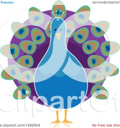 clipart pretty blue peacock with purple plumage royalty free illustration by maria bell [ 1080 x 1024 Pixel ]