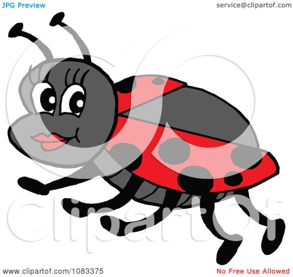 clipart pretty ladybug - royalty