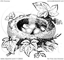 nest bird eggs illustration clipart vector retro prawny royalty
