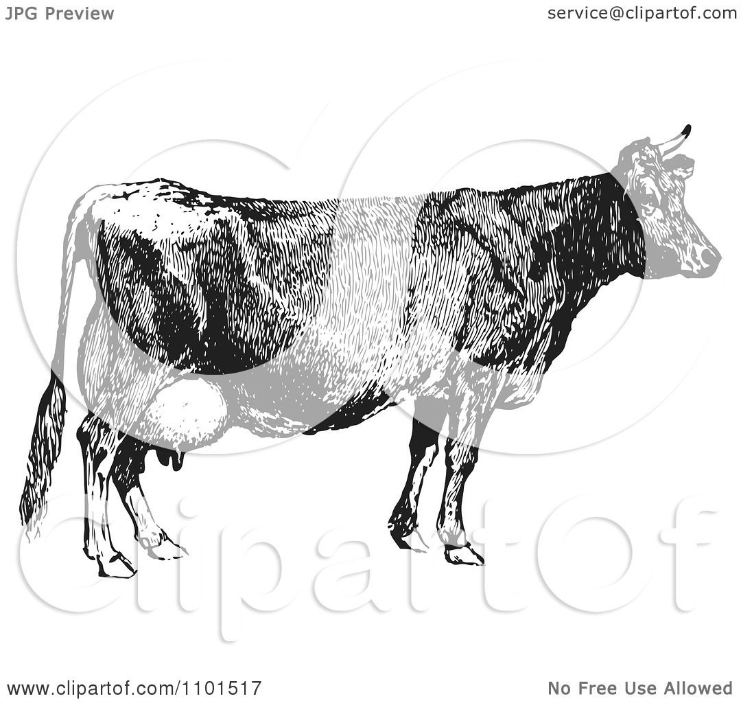 Clipart Retro Black And White Farm Cow