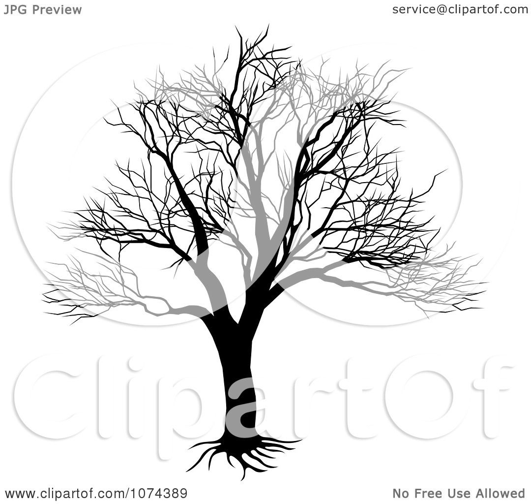 Clipart Silhouetted Black And White Bare Tree