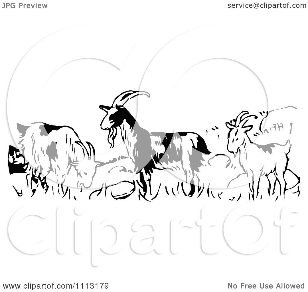 Clipart Vintage Black And White Goats In A Field