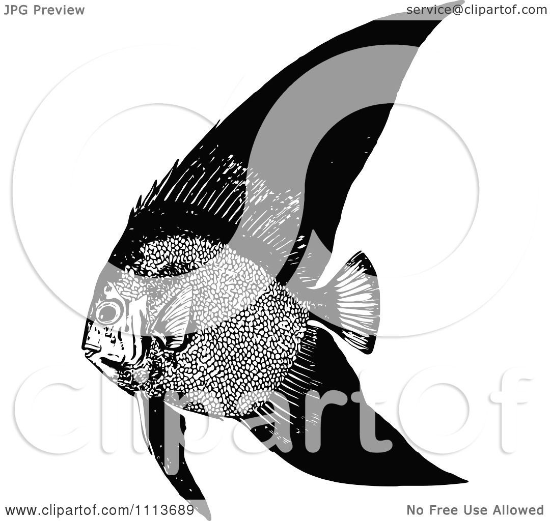 Clipart Vintage Black And White Tropical Marine Fish 1
