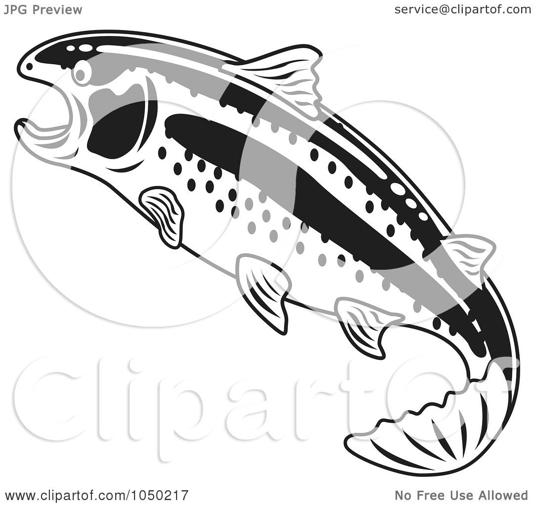 Rainbow Trout Colouring Cake Ideas and Designs