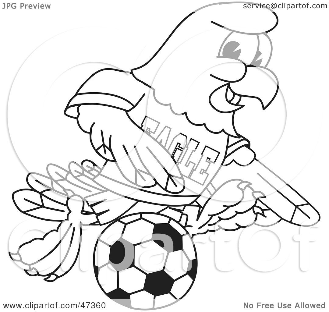 Royalty Free Rf Clipart Illustration Of A Bald Eagle
