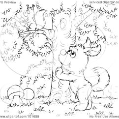 Dog Diagram Outline Large 4 Pin Cdi Wiring Squirrel Colouring Page On Pinterest