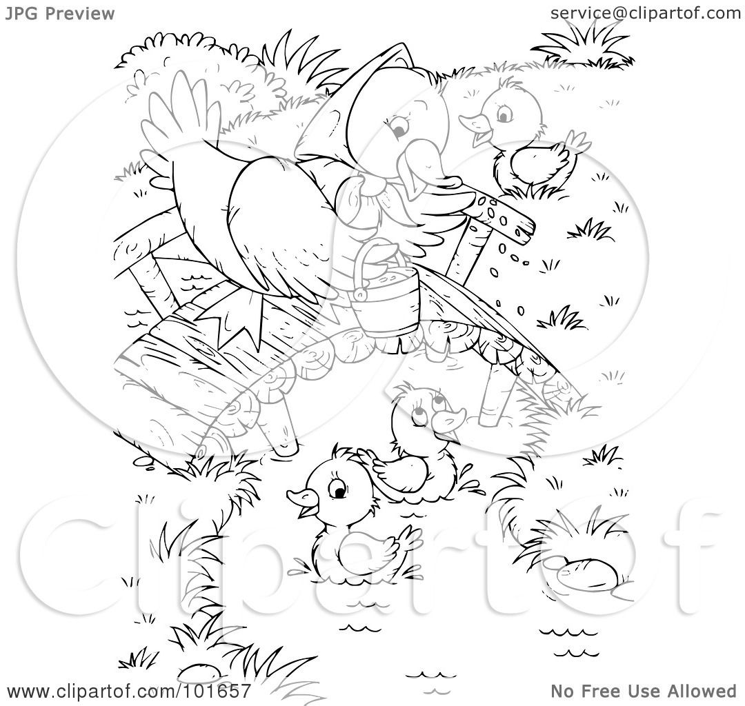 Funny Caricatures Animal