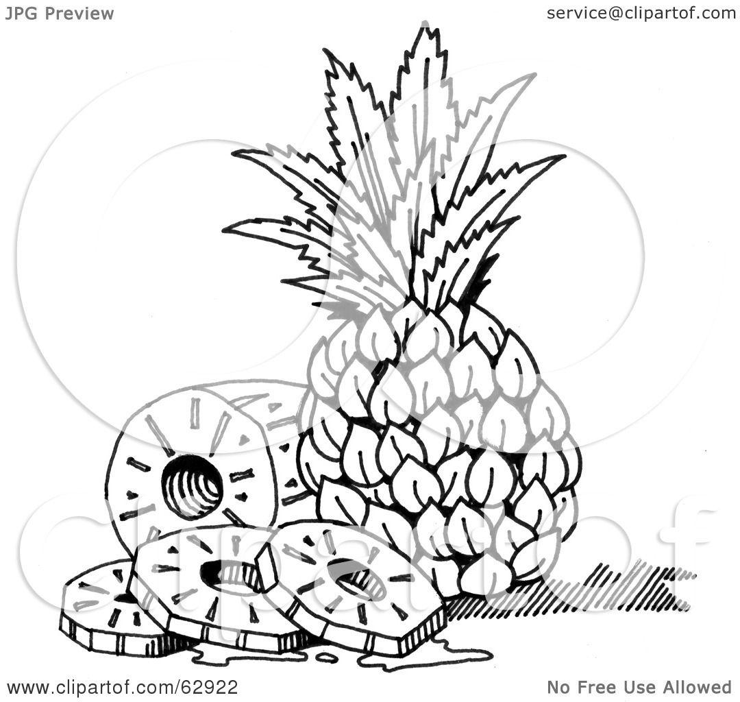 A Pineapple Tree