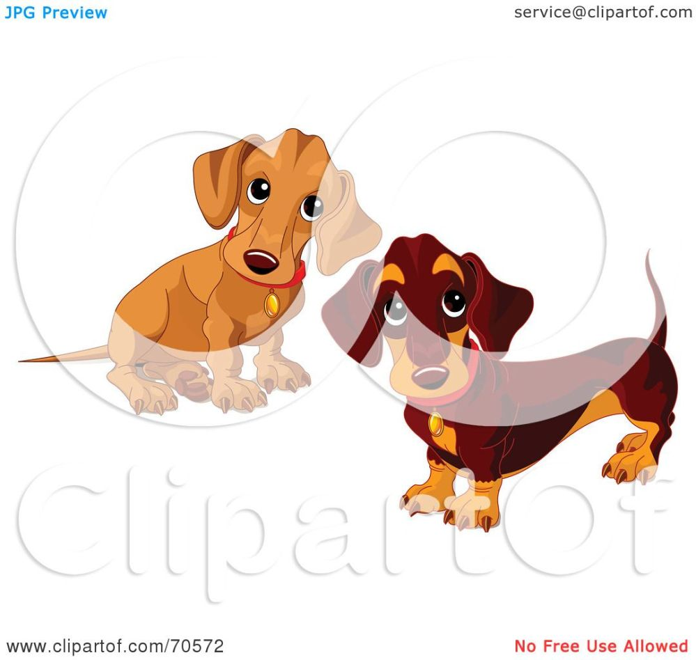 medium resolution of royalty free rf clipart illustration of two dachshund puppies by pushkin