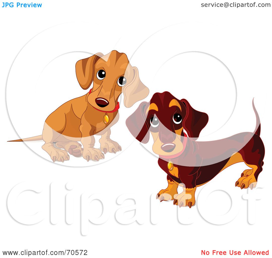 hight resolution of royalty free rf clipart illustration of two dachshund puppies by pushkin