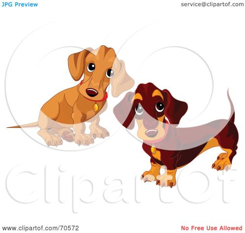 small resolution of royalty free rf clipart illustration of two dachshund puppies by pushkin