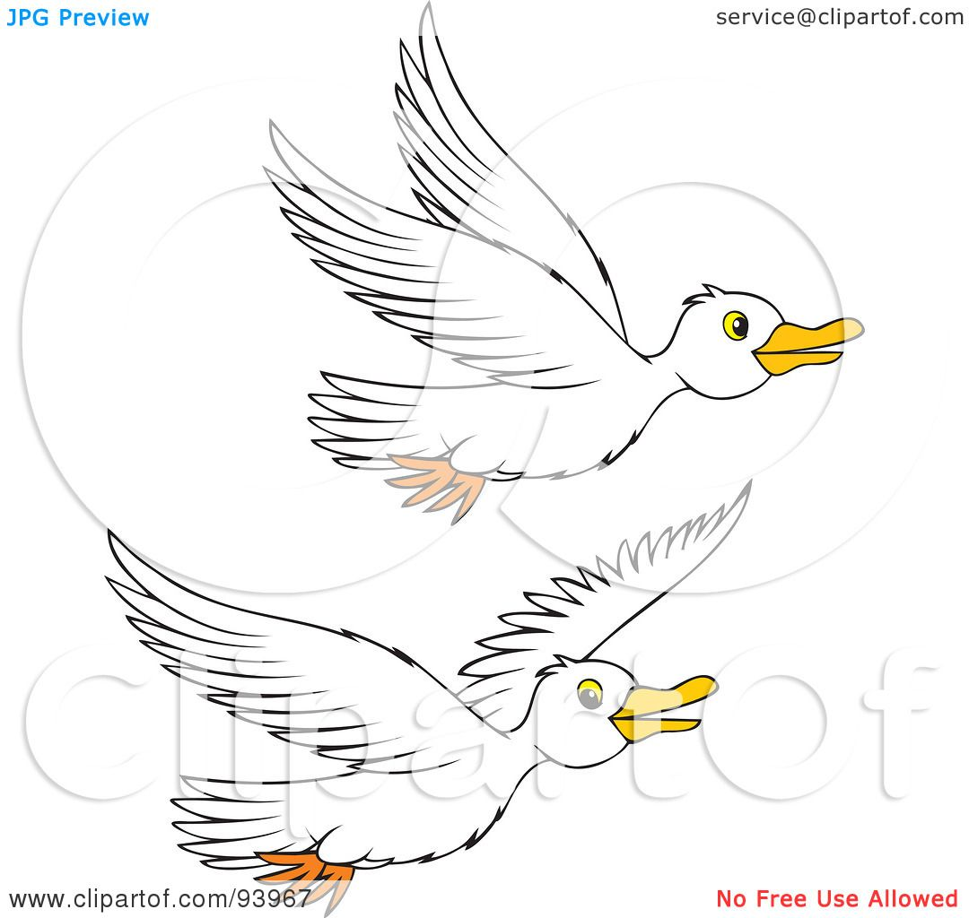 Royalty Free Rf Clipart Illustration Of Two Flying White