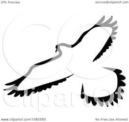 bird illustration clip royalty vector graphics seamartini clipart copyright regarding notes
