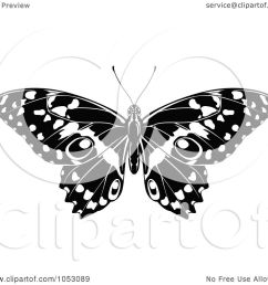 black and white butterfly clip art royalty free vector clip art illustration of a [ 1080 x 1024 Pixel ]