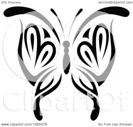 butterfly clip vector illustration royalty graphics clipart seamartini background