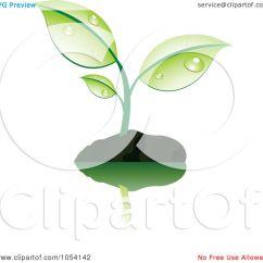 Plant Diagram Clip Art 1983 Peterbilt 359 Wiring Free Clipart Soil