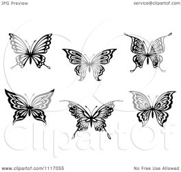 butterflies clipart illustration graphic graphics vector butterfly royalty clip tradition sm cartoon clipartof seamartini clipartpanda background copyright without collc0169 vectors