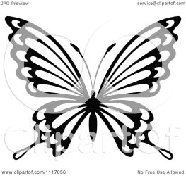 butterfly clipart vector illustration graphic royalty graphics tradition sm seamartini copyright regarding notes