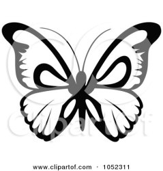 butterfly flying clip clipart vector illustration royalty dero rf illustrations