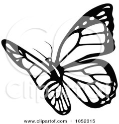 butterfly flying outline clip vector clipart illustration royalty dero levi